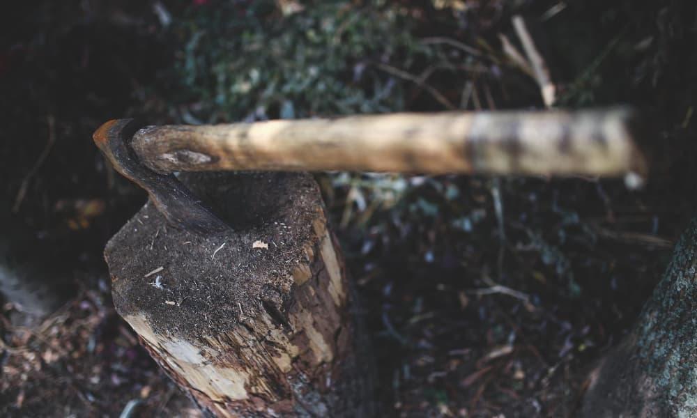 Cosa portare con se in escrusione? Meglio un coltello da caccia o un'ascia spaccalegna? 1