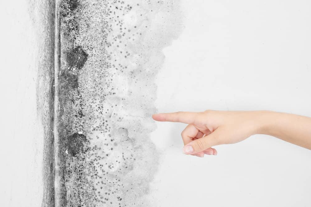 Come prevenire ed eliminare l'umidità in casa 2